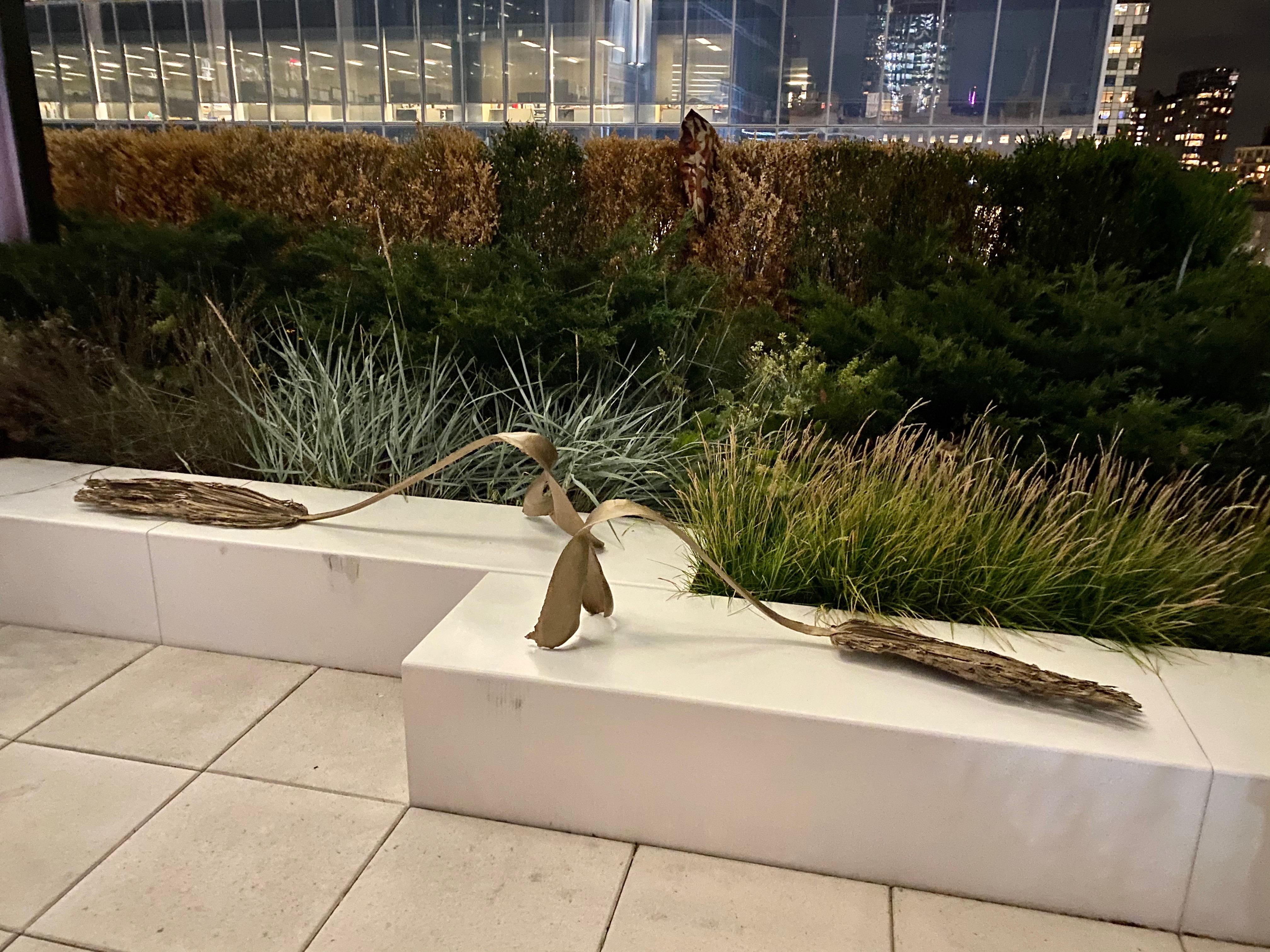 WTC Silver Arts Inaugural Cohort 2021