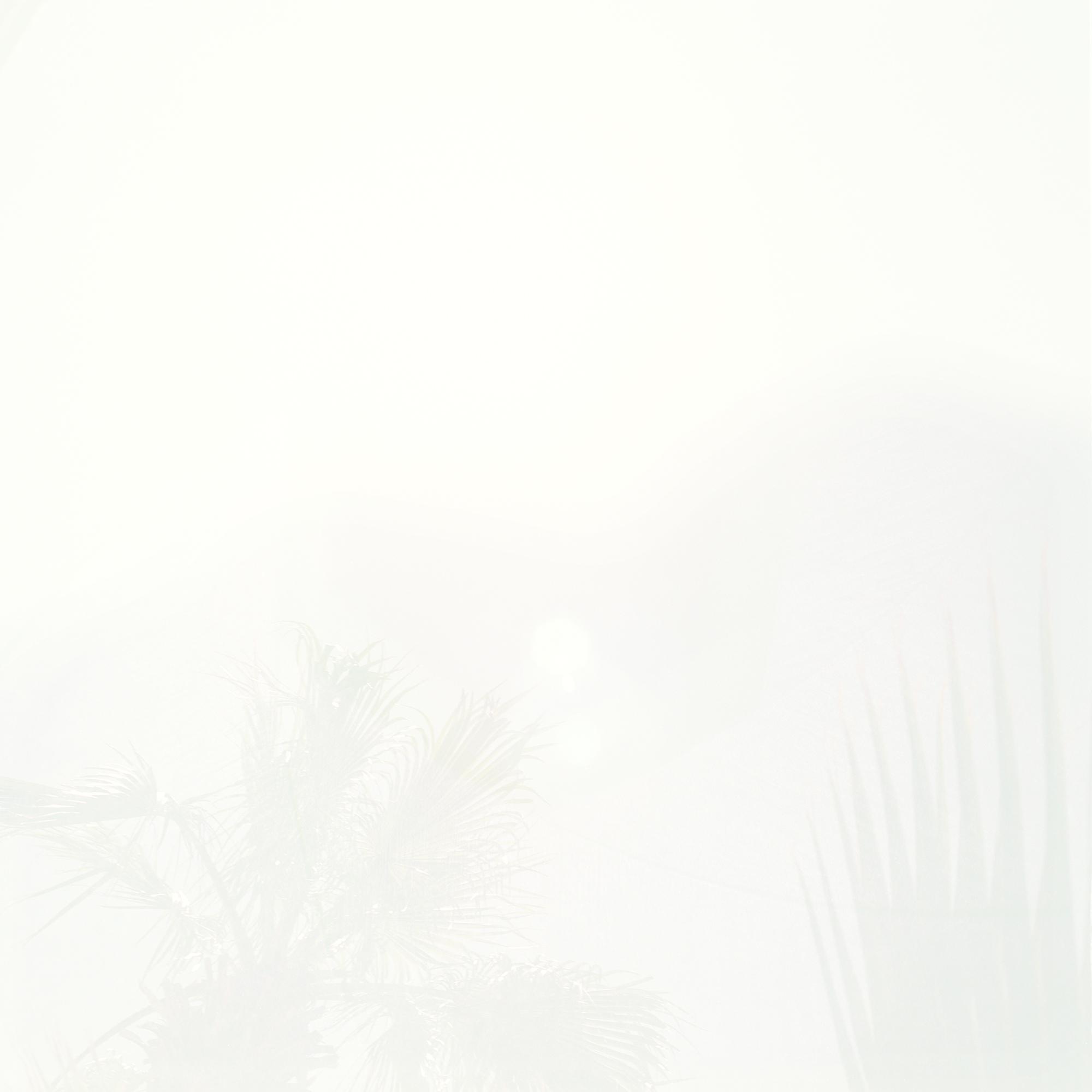 sun3_crop_FNL.jpg