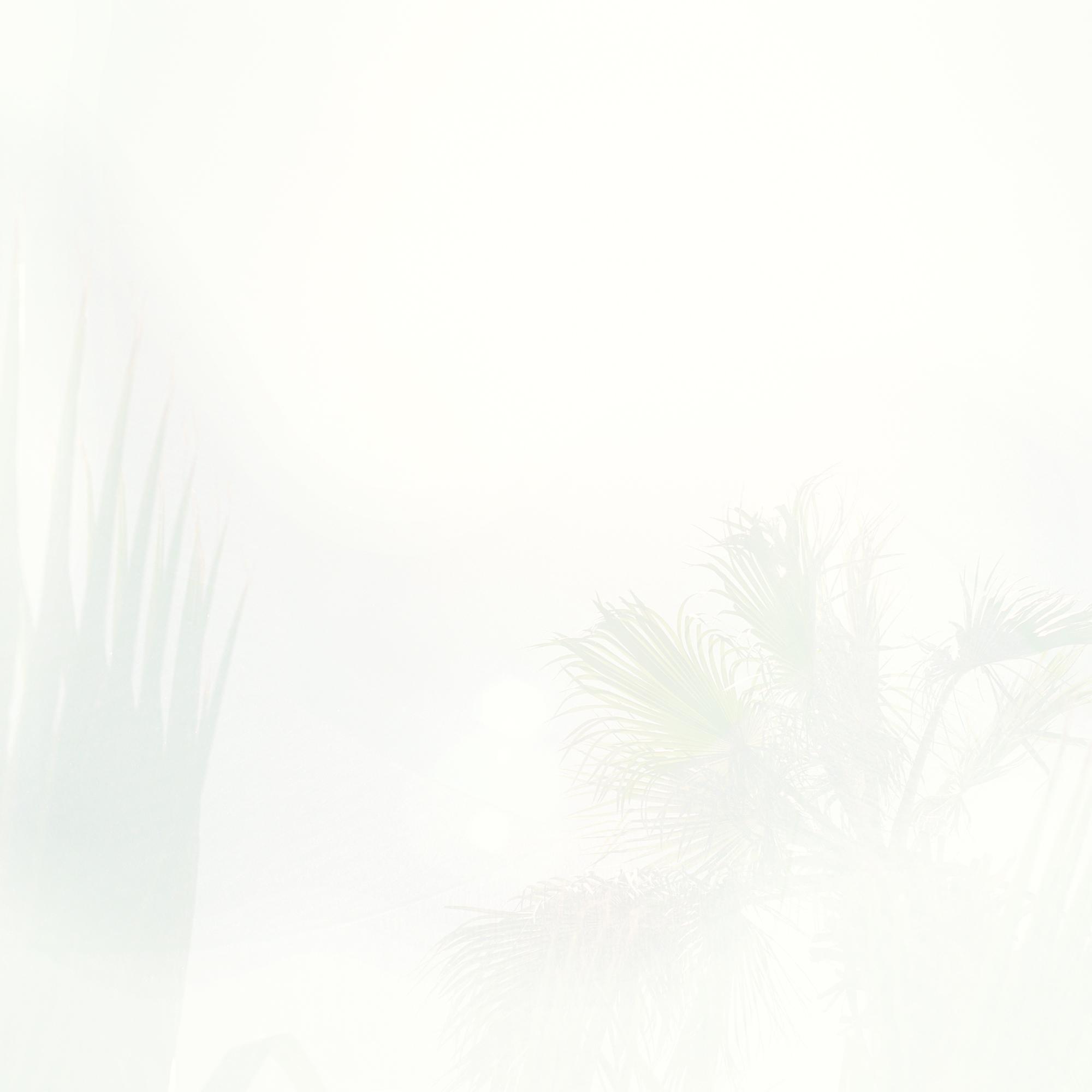 sun4_crop_FNL.jpg